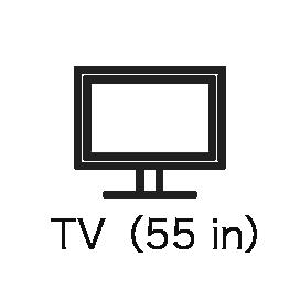 TV(55 in)